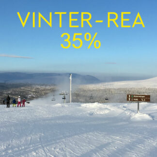 Vinter-REA